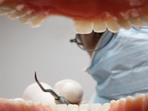 Will growing new teeth come sooner than we think?