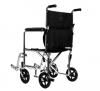 Companion Chair (Wheelchair), Stainless Steel